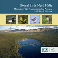 Boreal Birds Need Half