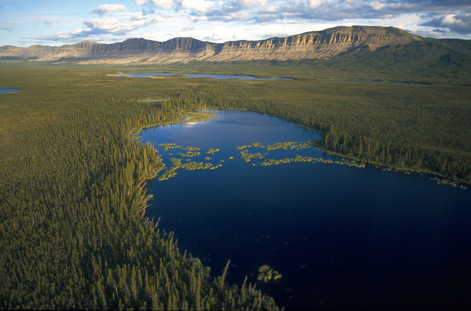 Oscar Lake