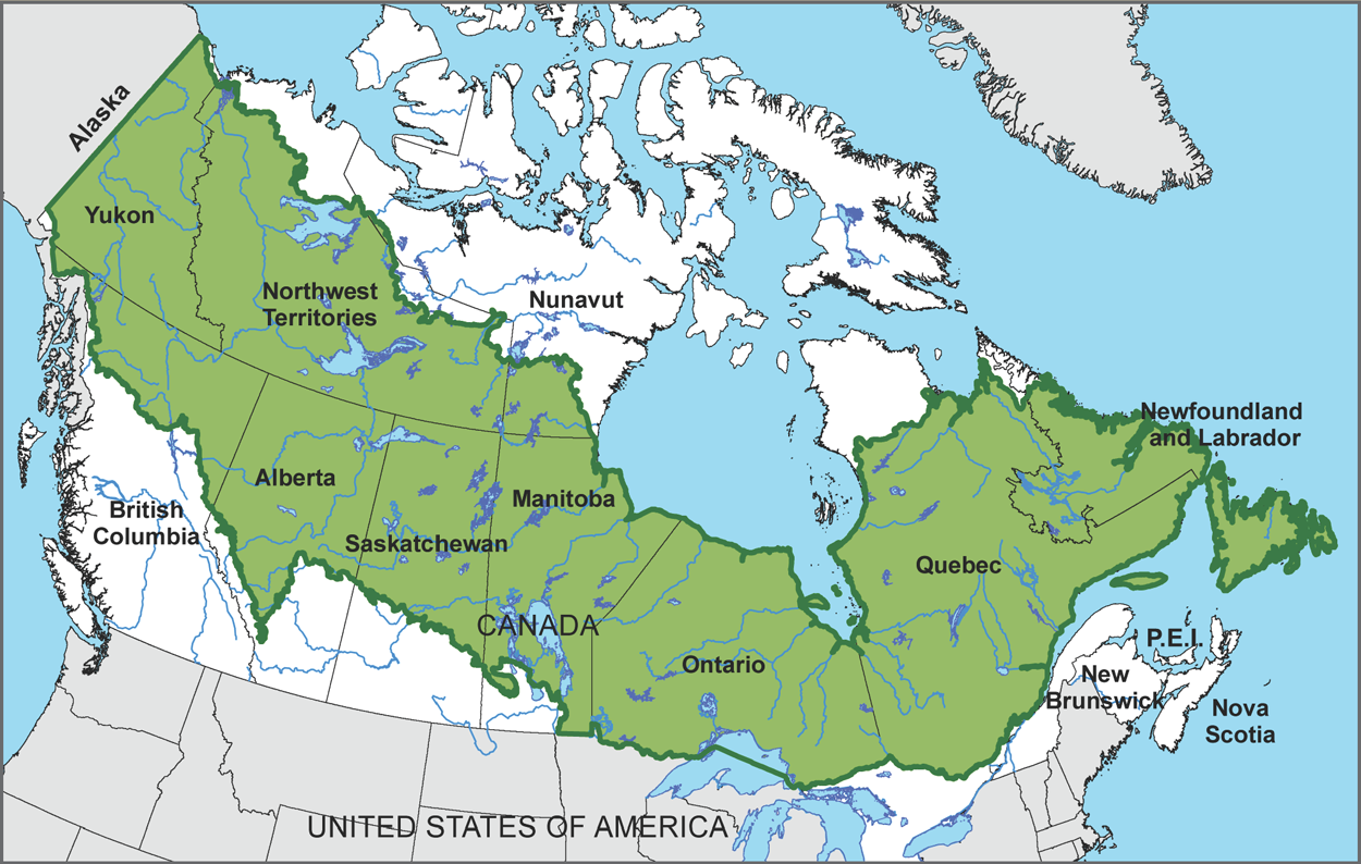 Boreal Forest Map Canada Canada's Boreal Forest | Boreal Songbird Initiative