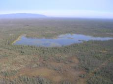 Boreal Forest of Northwest Territories