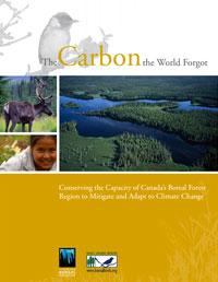 The Carbon the World Forgot - report